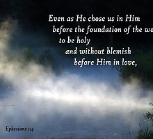 Chosen Before the Foundation of the World ~ Ephesians 1:4 by Robin Clifton