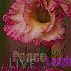Peace, Love, Hope, Laugh, Live, Happiness by HeavenOnEarth