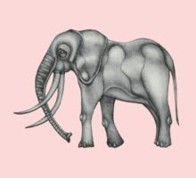 Elephant by Angelina Elander