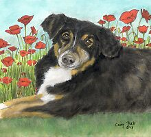 Tri Color Australian Shephard Dog Cathy Peek Animal Art by Cathy Peek