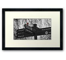 Robin in St James Park, London Framed Print