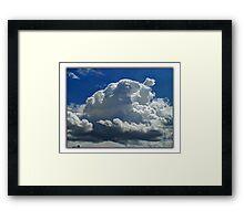 ©HCS Fluffy Framed Print