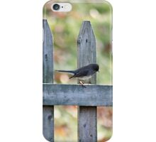 The early snow bird iPhone Case/Skin