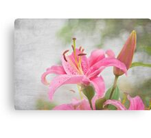 Sweet Time Canvas Print