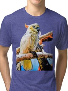 Bird Shirt/Hoodie/Sticker Tri-blend T-Shirt