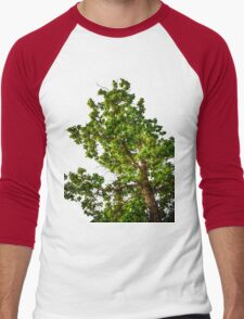 Tree Tee/Hoodie Men's Baseball ¾ T-Shirt