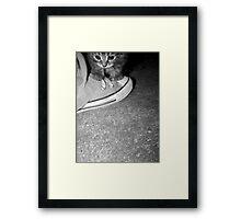 Mon Petit Chaton Noir Framed Print