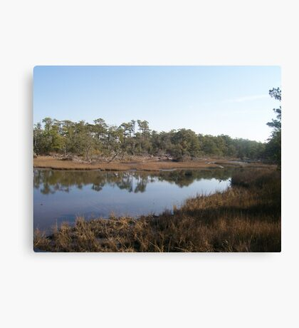Wetlands Canvas Print