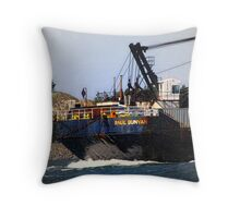 Barge in the Bay Throw Pillow