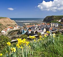 STAITHES IN BLOOM by gavin garner