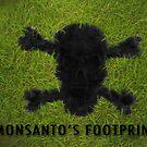 Monsanto's Footprint by Ann Morgan