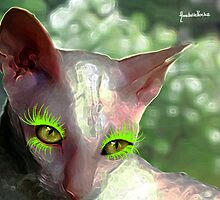 Charline the cat with the sexy eyes  by Annabellerockz