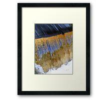 Gold Rush... Framed Print