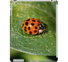 Little Ladybug On Leaf iPad Case/Skin