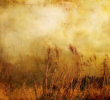 Beach Grasses of Gold... by Susan Werby