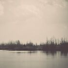 Lake. by Lindsay Osborne