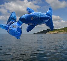 Flying Fish Over Lyme by lynn carter