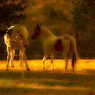 Horse Play by Jason Lee Jodoin