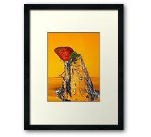 Fruit-Shark Attack! Framed Print