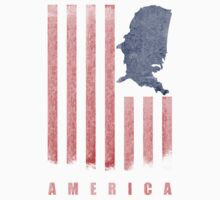 America (Distressed) by Look Human
