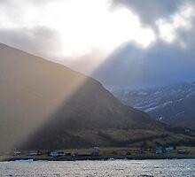 Burst of sun rays by Kelly Eaton