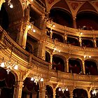 Budapest - The Walls - Hungarian State Opera House  by rsangsterkelly
