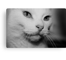 Happiness is.....  Canvas Print