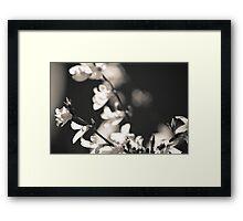 Black and White Flowers. Framed Print