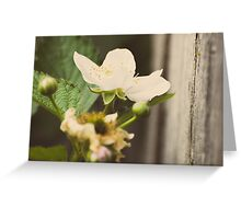 Flower. Greeting Card