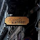 Budapest - Sign Outside Szimpla Kert by rsangsterkelly