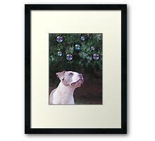 Fascination ~ Framed Print