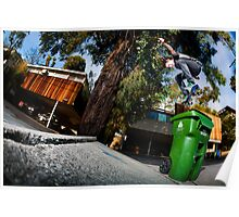 Stefan Janoski - Switch Backside 180 Poster