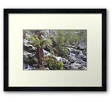 St Columba Falls Framed Print
