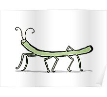 the stick insect Poster