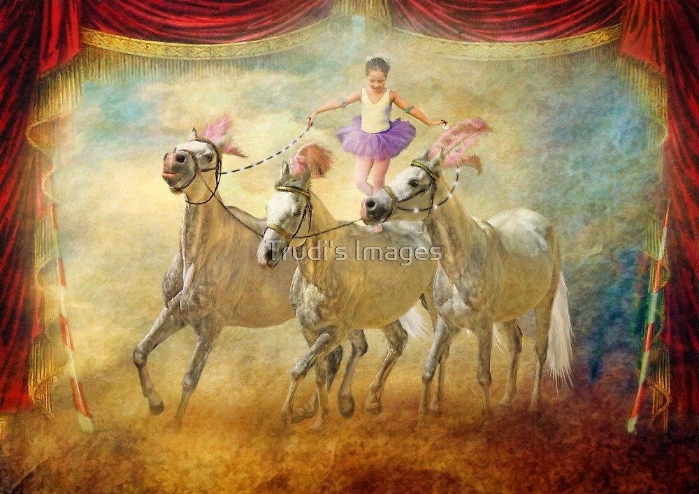 Cheval Danseur by Trudi's Images