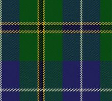 02778 Turnbull Hunting (1983) #2 Clan/Family Tartan Fabric Print Iphone Case by Detnecs2013
