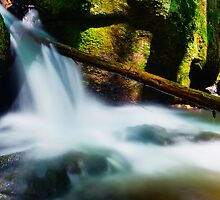 Waterfalls and Shadows by Nazareth