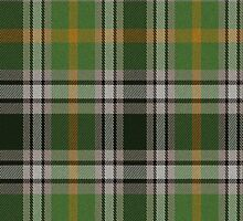 02781 Kalamazoo County, Michigan E-fficial Fashion Tartan Fabric Print Iphone Case by Detnecs2013