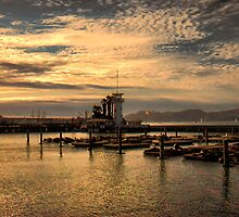 Bay in San Francisco by vigor