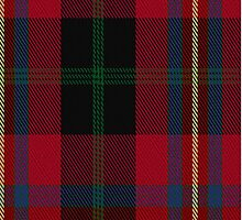 02782 Tweedbank Tartan Fabric Print Iphone Case by Detnecs2013