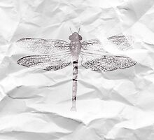 Dragonfly by angeliana
