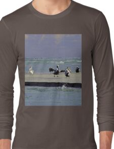 Pelicans & Seagulls Are Among Us in South Topsail, NC Long Sleeve T-Shirt