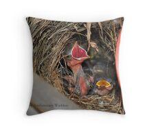 Warbler Babies Throw Pillow