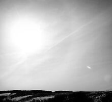 Solar by Sarah Cowan