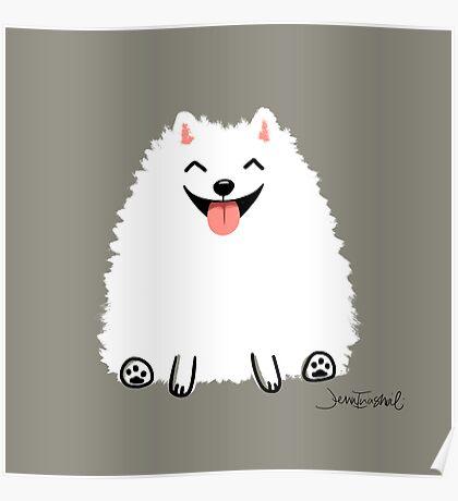 Fluffy White Pomeranian Poster