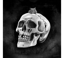 Cracked skull with mouse BW Photographic Print