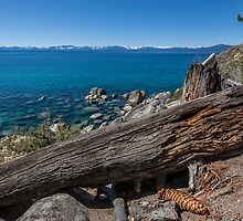 At Secret Harbor - Lake Tahoe by Richard Thelen