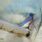 Little Blue Bird by Rhonda Strickland