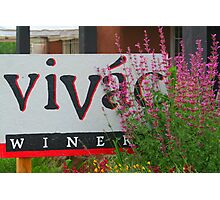 Vivac Winery Photographic Print