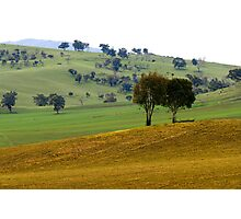 Rural Scene - Khancoban, NSW Photographic Print